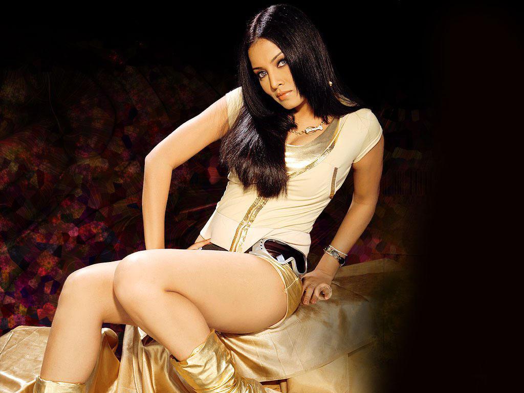 katrina kaif hot pics in dhoom 3 saree navel photos in bang bang