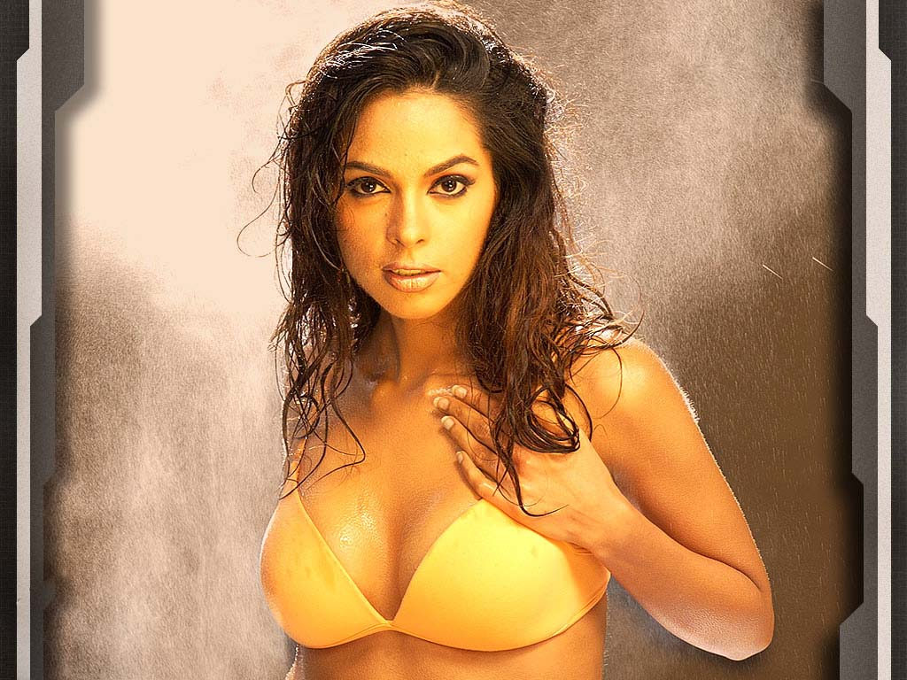 housefull.in - mallika sherawat, wallpaper, free wallpaper, desktop